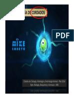 Embriología.pdf