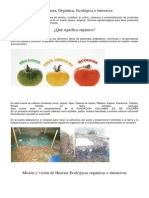Huerta Ecológica tomates.docx