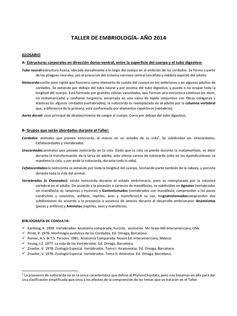 Glosario de Embriología.pdf