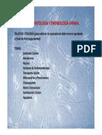 Introducción célula.pdf