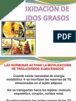 BETA OXIDACION DE ACIDOS GRASOS.pptx