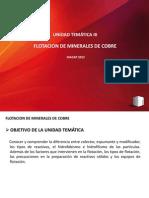 MODULO III FLOTACION DE MINERALES DE COBRE TECK 2012.pptx