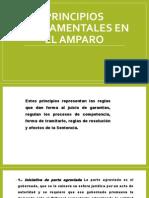 PRINCIPIOS FUNDAMENTALES EN EL AMPARO.pptx