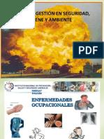 5.- Sistemas de Gestión en Seguridad - Lewis Valero.pdf