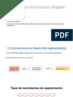 Movimientos del intestino delgado.pptx