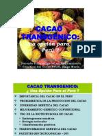 CacaoTrangenico_LuisGarcia.pdf