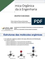 Grupos funcionais.pdf