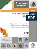 guia rapida de nefrologia.pdf