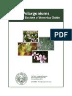 Pelargonium Guide