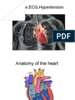 Cadiac Cycle, Heart Sound,ECG,Hypertension