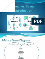 Asexual vs Sexual Reproduction PowerPoint