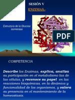 Bioquimica_Sesion_V_Enzimas_OK_1.ppt