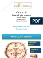 clase 4. Morfología interna.pdf