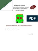 Proyecto Teoria de las Organizaciones