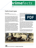 Cattle Breed Types
