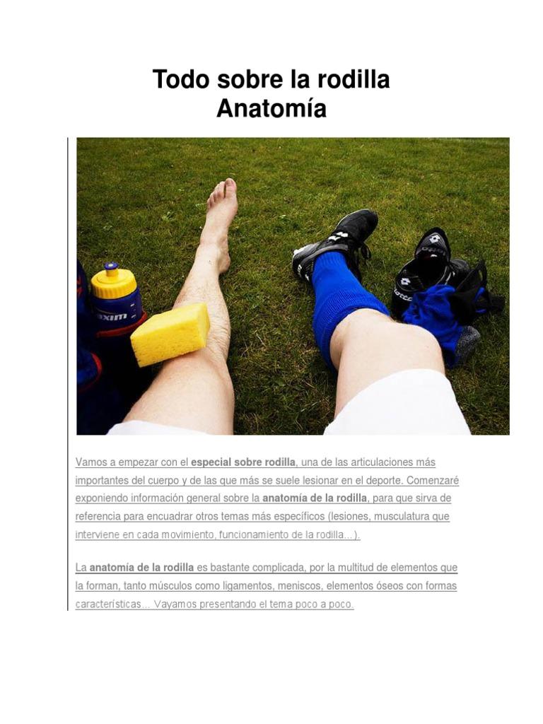 Todo sobre la rodilla Anatomía.docx