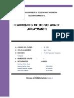 ELABORACION DE PROYECTO MERMELADA DE AGUAYMANTO.docx