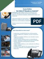 brochure-capacity-curso-voip-online.pdf