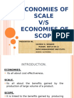 Economies of Scope and Scale