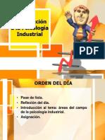 Áreas del campo de la Ps Industrial-Evaluación.pptx