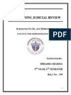 Does the judicial review compromise the doctrine of judicial neutrality?