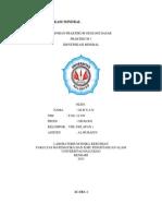 LAPORAN IDENTIFIKASI MINERAL.docx