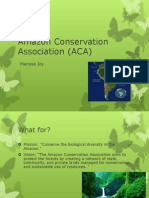 Marissa Amazon Conservation Association.pptx