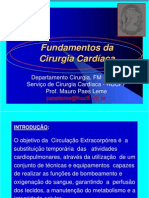 AULA M PAES LEME FUNDAMENTOS C CARD.pdf