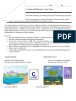 carbon nitrogen cycle journey