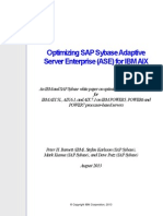 Optimizing SAP Sybase ASE for IBM AIX 2013 final.pdf