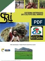 El SICA en Latinoamerica.pdf