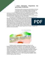 Resume Kaitan Antara Tektonisme