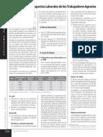 ASPECTOS LABORALES  DE TRABAJADORES AGRARIOS.pdf