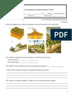 Teste5 perturbações no eq.dos ecossistemas 12-13.doc