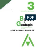 adaptación ccnn3 bg3.pdf