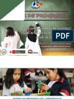 MAPAS DE PROGRESO.pptx