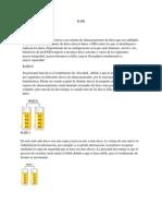 RAID informe.docx