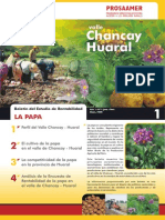 boletin papa_chancay_huaral.pdf