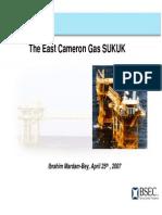 The Cameron Gas