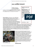 Primate Fichas mono ardilla (Saimiri) Taxonomía, Morfología, y Ecología.pdf