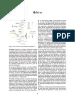 Habitus.pdf
