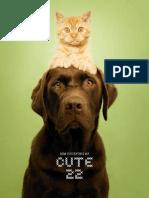 ISM_Briefing_3.pdf