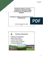 Formação e Manejo de Pastagens - Especialização Produção de Bovinos.pdf