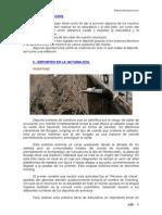 Trabajo Educacion Fisica.pdf