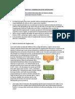 Caso Práctico- Gobierno solvencia y contagio.pdf