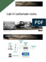 23 - Carbonate - Lab