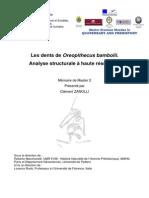 Zanolli_2008_master_thesis.pdf