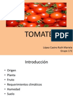 expo tomate.pptx