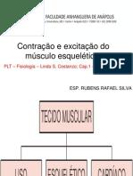 2 Contração e excitação do músculo esquelético. (2).ppt