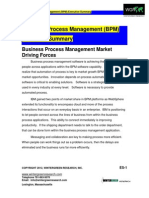 BPM Market Shares Strategies and Forecas.pdf